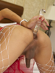 Hot ladyboy in fishnet stockings fingers her anal