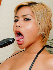 Ladyboy Bebe gets fucked by ass toys