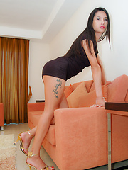 Young ladyboy prostitute fucked in handcuffs