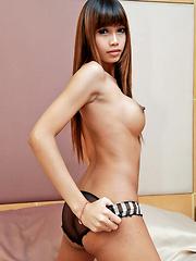Sweet Bangkok ladyboy strip and jerks off