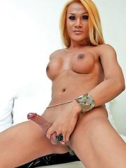 Dirty domme ladyboy mistress Pamela jerks off