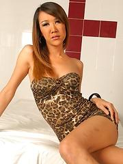 Sexy Asian shemale Gif