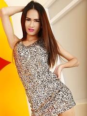Skinny Thailand Ladyboy New