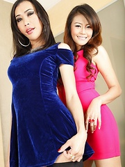 Ladyboy with Lady Hot Scene